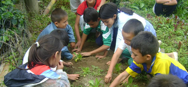 Niños-eco