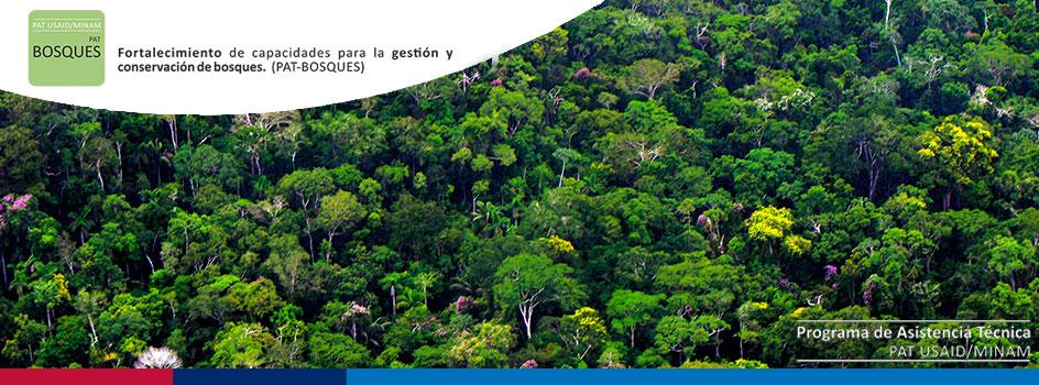 PAT Bosques