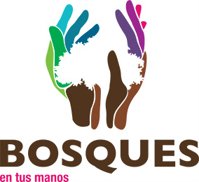 Web Bosques