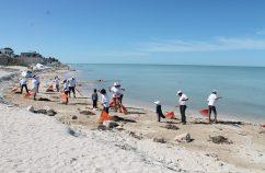 dia limpieza de playas
