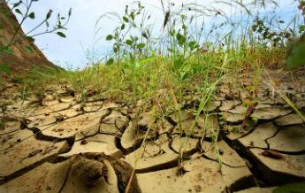 desertificacion_MAYO345pix