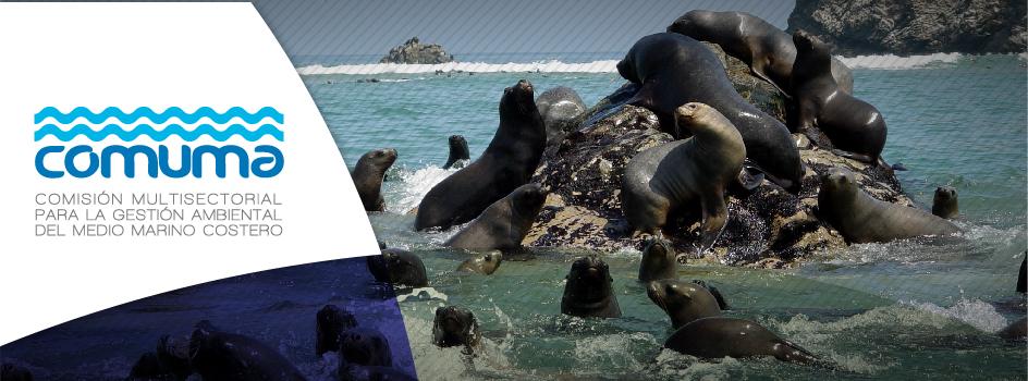Ayuda a mejorar el desempeño de la gestión ambiental del ecosistema marino-costero