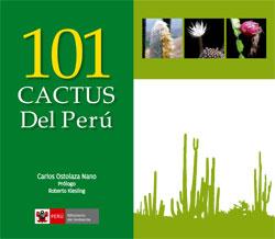 101-cactus-del-peru