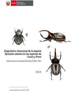 Diagnostico-situacional-Dynastes-satanas-Cusco-y-Puno