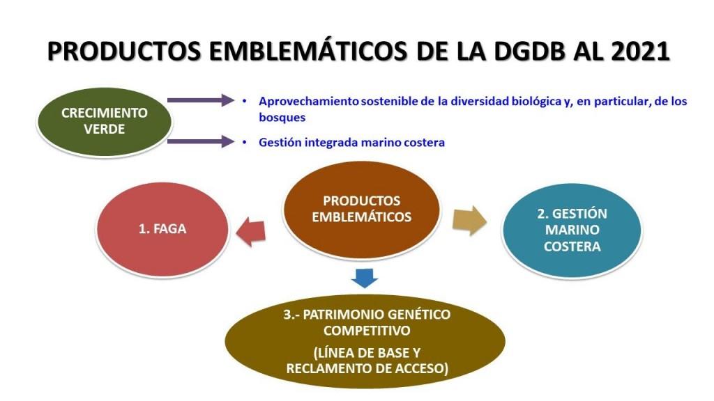 Productos-Emblematicos-2021