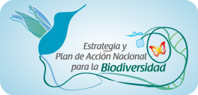 Estrategia y Plan de Acción Nacional para la Biodiversidad