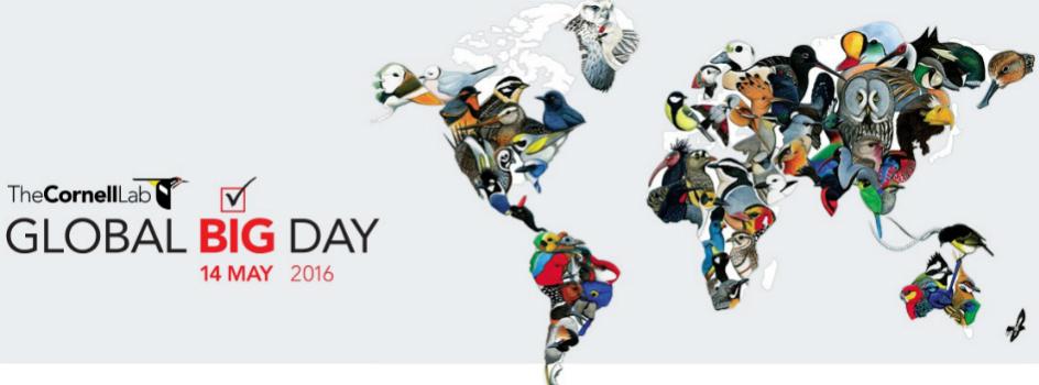 """Participa del """"Global Big Day"""" y registremos nuevamente el mayor número de especies de aves observadas en un solo día"""