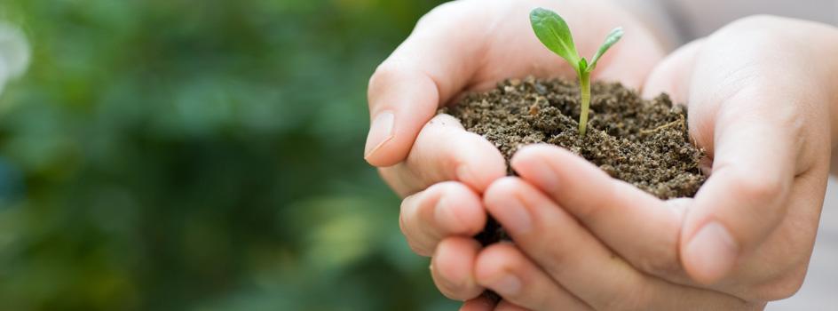 MINAM pone en consulta propuesta de Contribuciones Nacionales que ayudará a mitigar los efectos del cambio climático