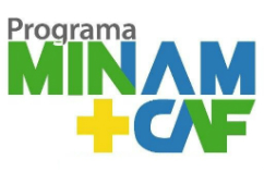 MINAM_CAF_pix242