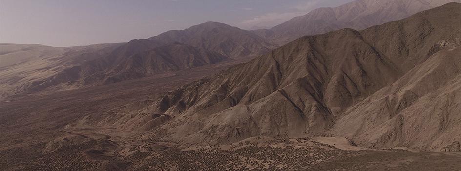 Tillandsia: Formación vegetal permanente que se ubica en los desiertos, gracias a la neblina costera y sus particulares adaptaciones para obtener minerales y agua del ambiente