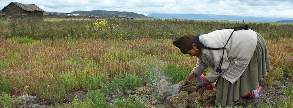 MINAM brinda asistencia técnica para la elaboración de la zonificacion ecológica y económica