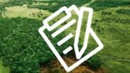 congreso salud ambiental 242 pix