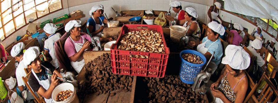 Programa MINAM+CAF lanza concurso de planes de econegocios y convocatoria para financiamiento de PIP ambientales en Cusco, Puno y Madre de Dios