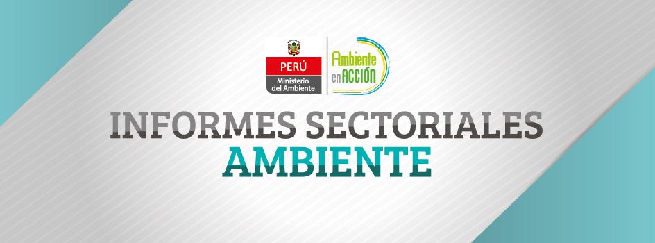 El Ministerio del Ambiente anuncia el lanzamiento de la serie Informes Sectoriales Ambiente