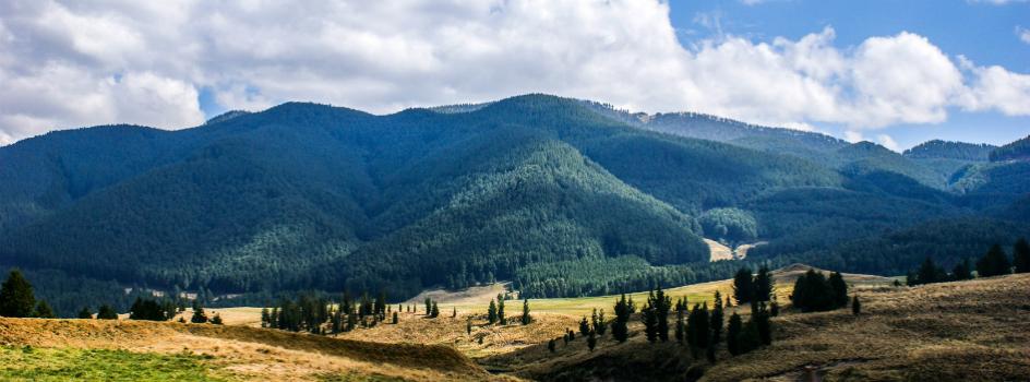 Mañana la OCDE y la CEPAL presentarán el Informe de Desempeño Ambiental del país