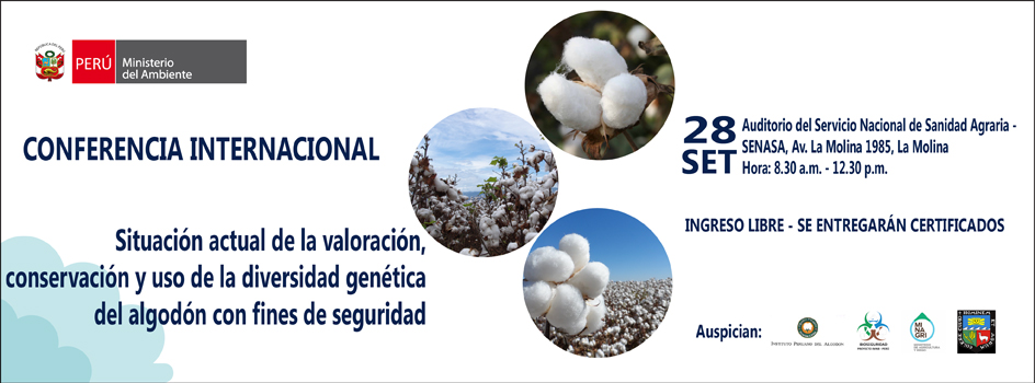 Expertos internacionales analizarán situacion actual del algodón con fines de bioseguridad