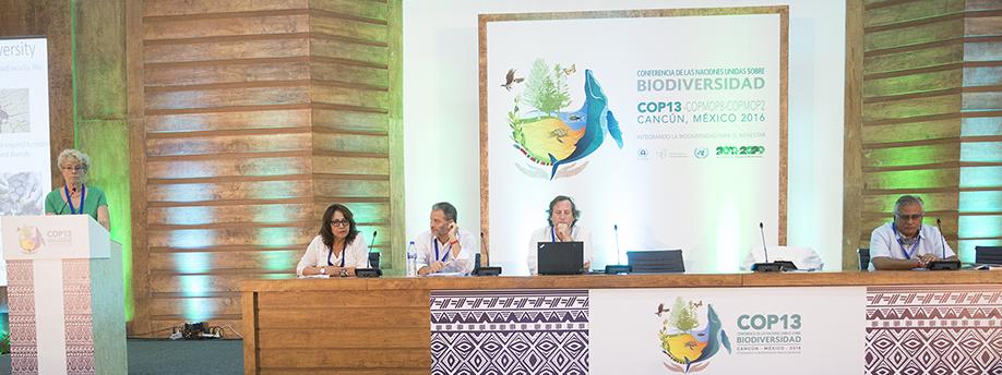 Culminó con éxito la Conferencia de Naciones Unidas sobre biodiversidad