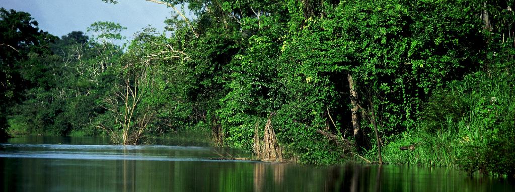 Perú podrá acceder a financiamiento para proyectos y programas que contribuyan al cuidado del ambiente