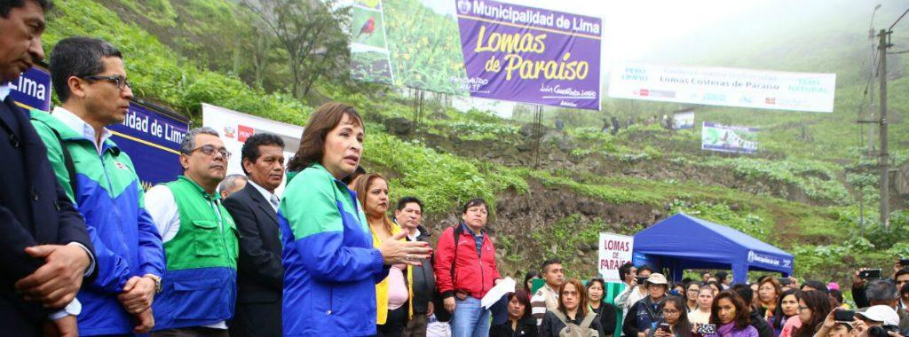 Jóvenes voluntarios del Ministerio del Ambiente limpian acceso a Lomas de Paraíso en Villa María del Triunfo