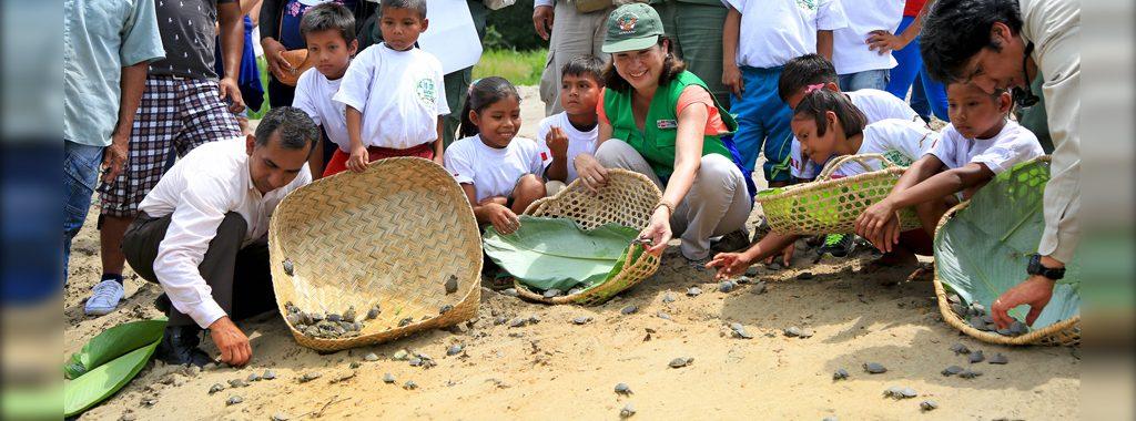 Liberación de 5 mil taricayas busca promover turismo vivencial en la Reserva Nacional Pacaya Samiria
