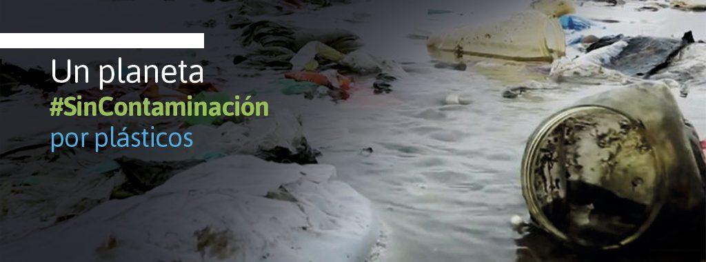 ONU Medio Ambiente designó a Perú como sede regional del Día Mundial del Medio Ambiente
